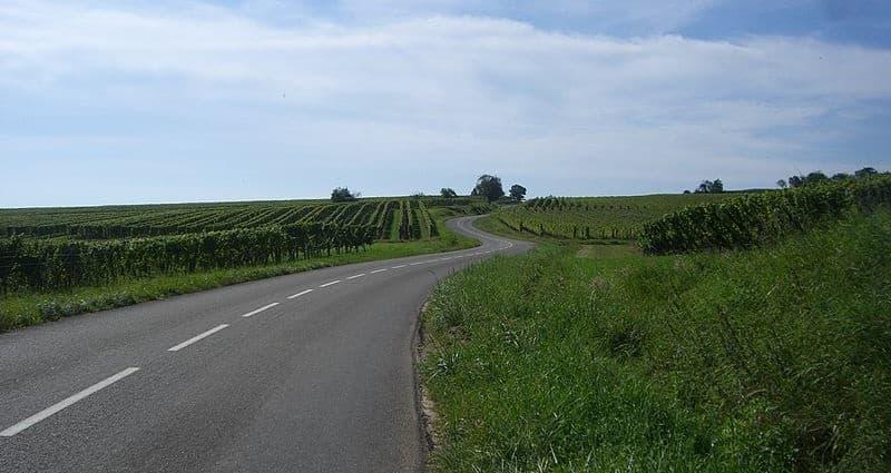 Route des Vins D'Alsace - ©Maximilian Dörrbecker